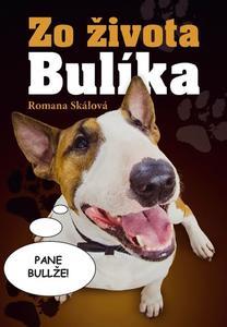 Obrázok Zo života Bulíka