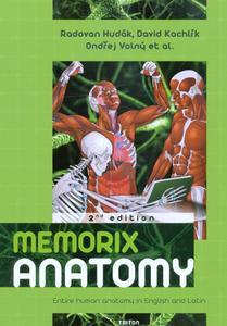 Obrázok Memorix anatomy