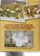Obrázok Simpsonovi Rodinná historie