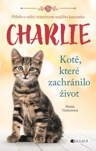 Obrázok Charlie Kotě, které zachránilo život