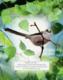 Obrázok Vtáky našich lesov