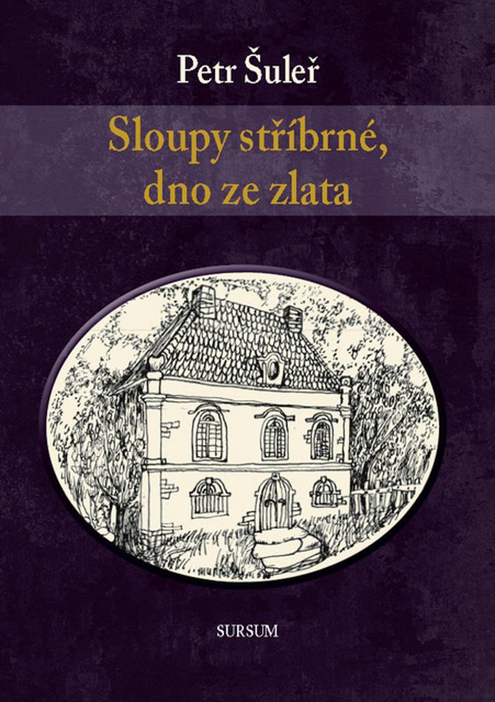 Sloupy stříbrné, dno ze zlata - Petr Šuleř
