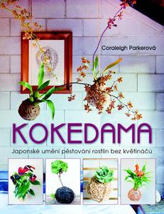 Obrázok Kokedama