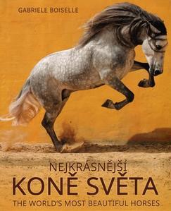 Obrázok The World's Most Beatiful Horses /Nejkrásnější koně světa