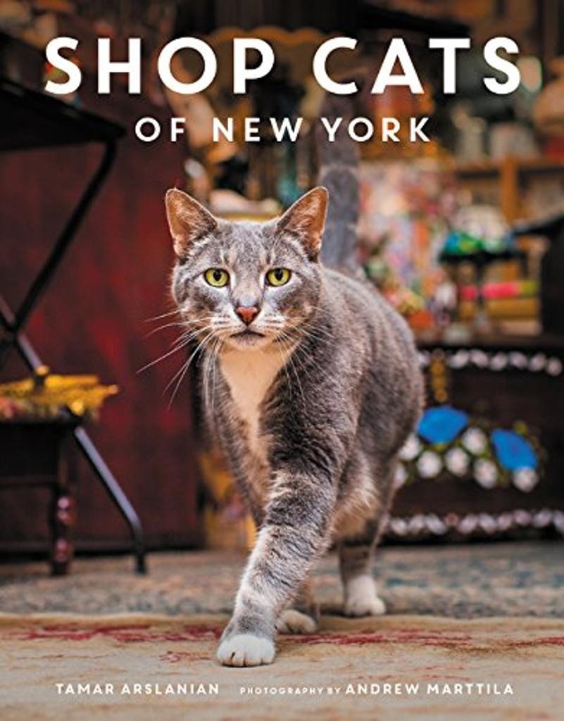 Shop Cats of New York - Tamar Arslanian