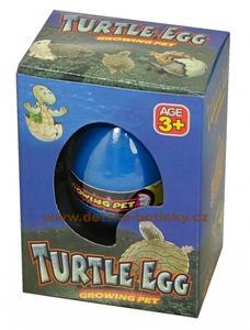 Obrázok Vejce Rostoucí zvířátko želva