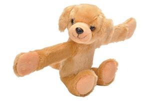 Obrázok Plyšáček objímáček Labrador 20 cm