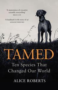 Obrázok Tamed