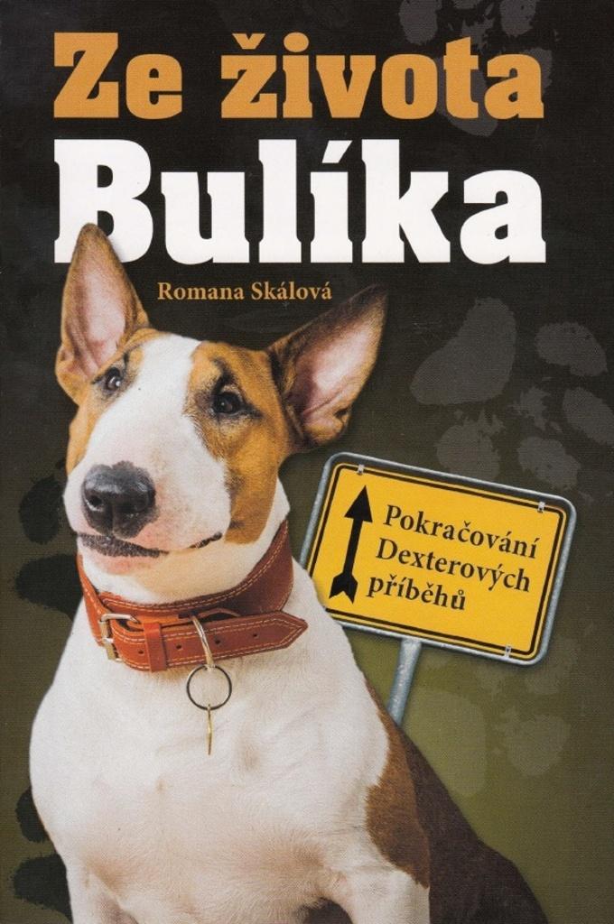 Ze života Bulíka - Romana Skálová