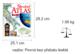 Obrázok Školní atlas              IKAR