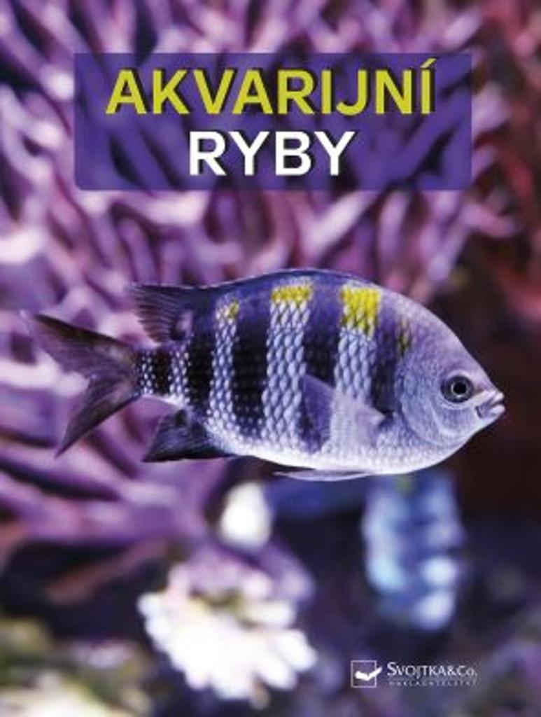 Akvarijní ryby - Burkard Kahl, Dieter Vogt, Wally Kahl