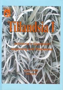 Obrázok Tillandsia I