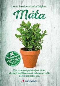 Obrázok Máta