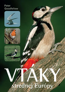 Obrázok Vtáky strednej Európy