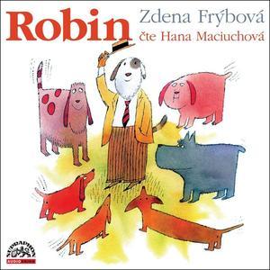 Obrázok Robin