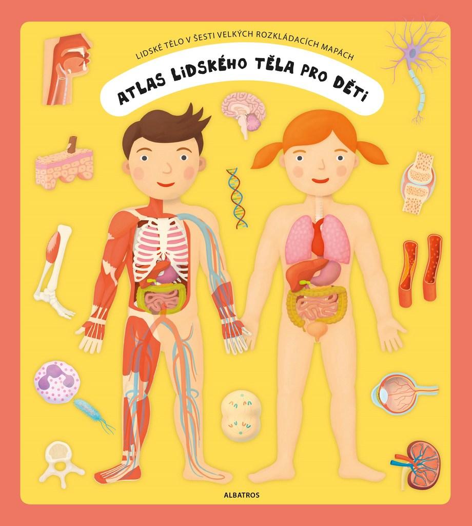 Atlas lidského těla pro děti - Oldřich Růžička