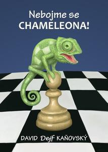 Obrázok Nebojme se chameleona!