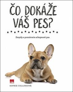 Obrázok Čo dokáže váš pes?