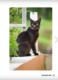 Obrázok Inteligentní kočka