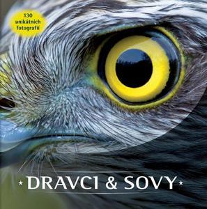 Obrázok Dravci a sovy