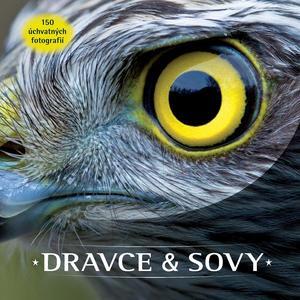 Obrázok Dravce a sovy