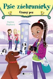 Obrázok Psie záchranárky Úžasný pes (3)