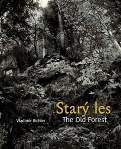 Obrázok Starý les / The Old Forest