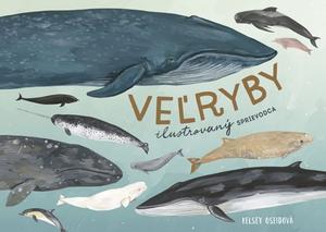 Obrázok Veľryby