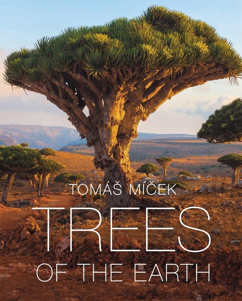 Trees of the Earth - Tomáš Míček
