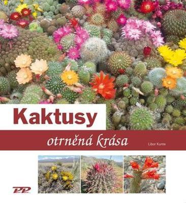 Obrázok Kaktusy