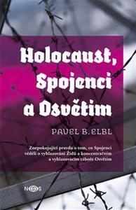 Obrázok Holocaust, Spojenci a Osvětim