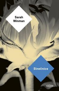 Obrázok Slnečnice