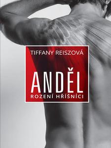 Obrázok Anděl