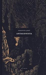 Obrázok Antagonista