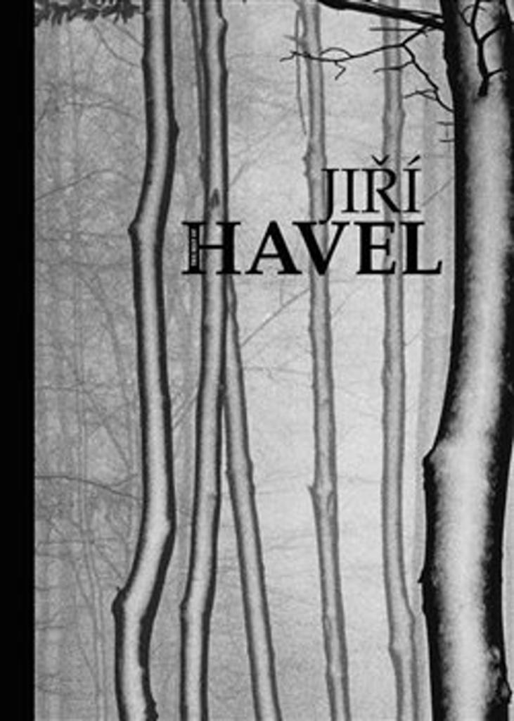 The Best of Jiří Havel - Eva Hrubá, Jan Pohribný, Jiří Havel