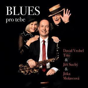 Obrázok Blues pro tebe