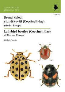 Obrázok Brouci čeledi slunéčkovití (Coccinellidae)