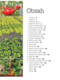 Obrázok Zahradničení bez rytí