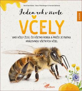 Obrázok Jeden rok v živote včely
