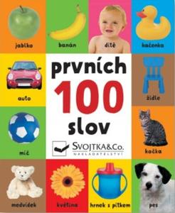 Prvních 100 slov