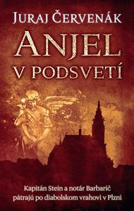 Obrázok Anjel v podsvetí (Barbarič a Stein 7)