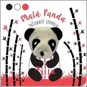 Obrázok Malá panda