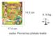 Obrázok Legenda o spálené prérii + CD ROM