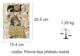 Gustav Klimt The Complete Paintings