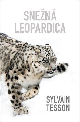 Obrázok Snežná leopardica
