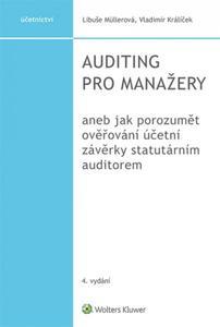 Obrázok Auditing pro manažery