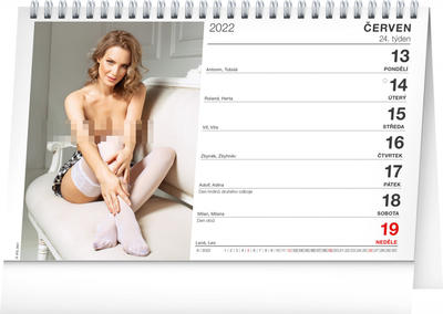Obrázok Stolní kalendář Girls 2022