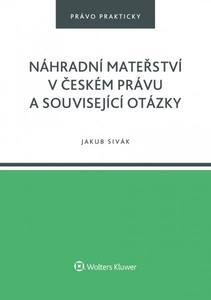 Obrázok Náhradní mateřství v českém právu a související otázky