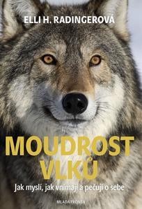 Obrázok Moudrost vlků
