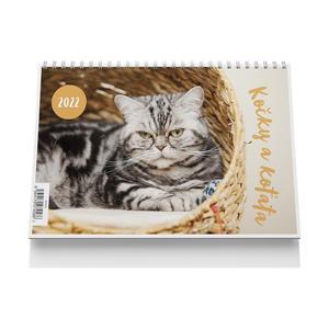 Kočky a koťata 2022 - stolní kalendář